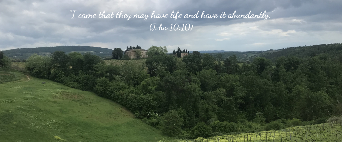 I came that they may have life and have it abundantly. (John 1010 ESV)